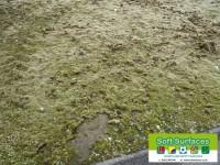 Rejuvenation, Restoration Sand Filled Synthetic Grass Sports Pitch