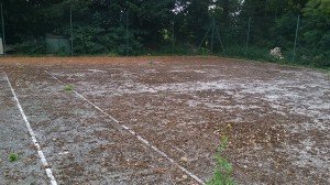 Tennis Court Maintenance Management Process