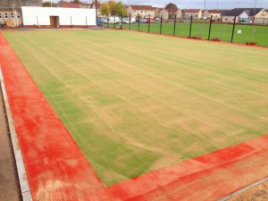 Artificial Needlepunch Turf Surfacing